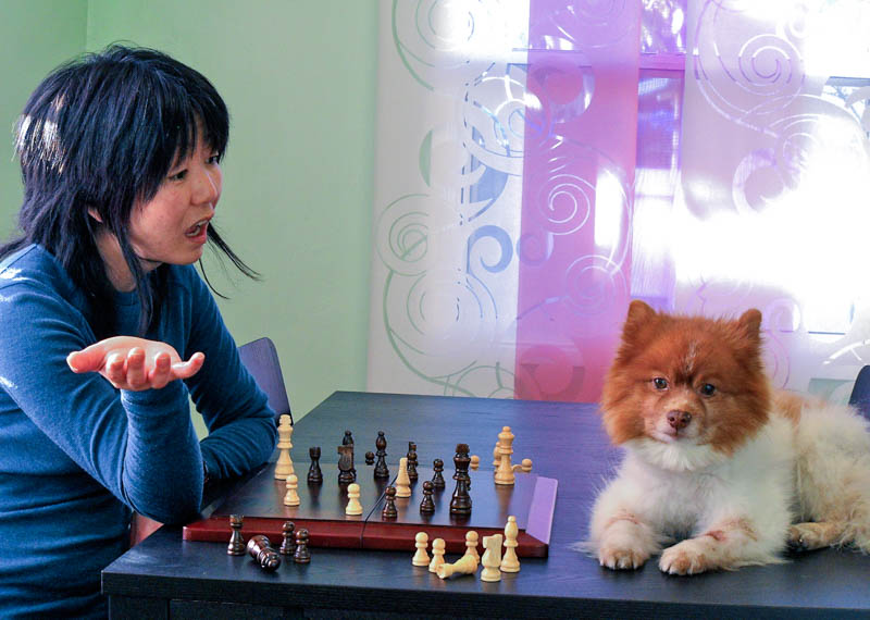 photo of Jennifer Moon and Mr. Snuggles playing chess